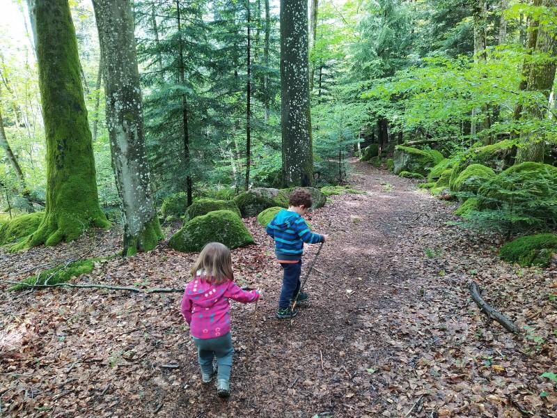 Die Kinder auf einem Waldweg