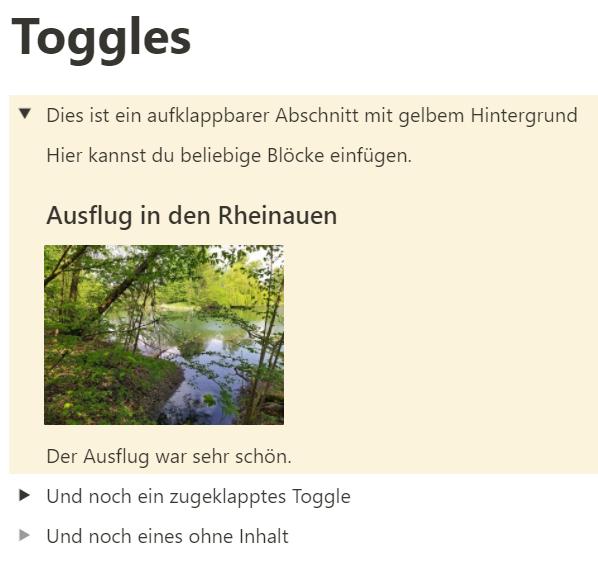 Tutorial für Notion-Anfänger: Toggles - aufgeklappt