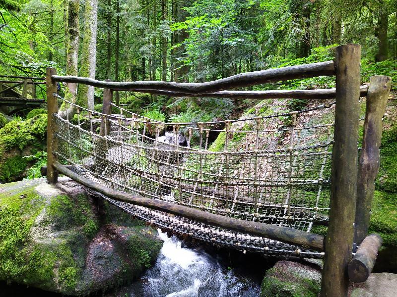 Monatsrückblick Juli 2021 - Wanderung Gertelbacher Wasserfälle - Hängebrücke