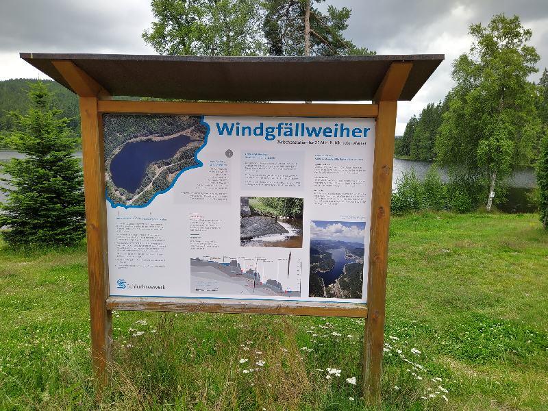 Wanderung von Falkau nach Altglashütten - Windgfällweiher